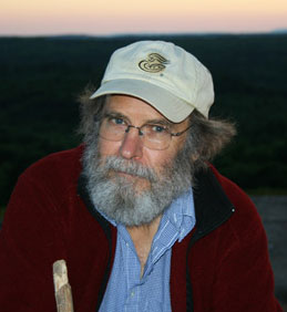 Dale Peterson, Author